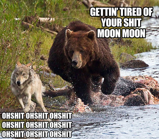 Getting really tired of you, Moon Moon…
