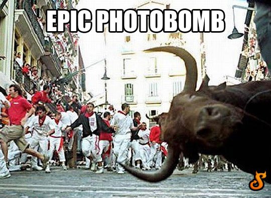 Photobomb level: running of the bulls…
