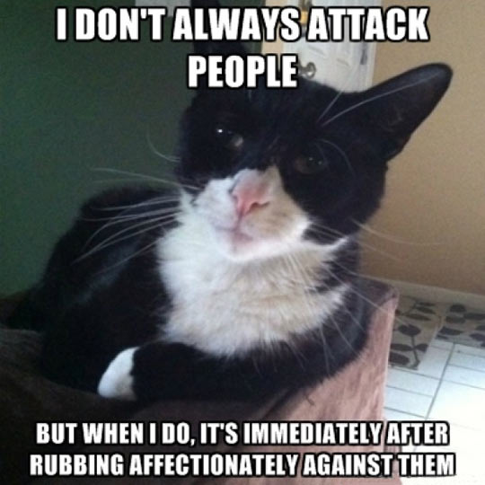 I don't always attack people…
