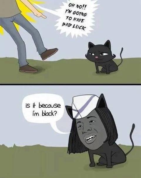 funny-cat-black-bad-luck-comic