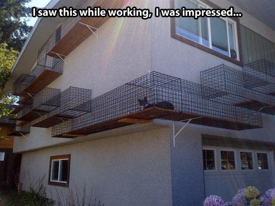 It's a catwalk…