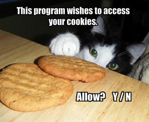 funny-cat-cookies-table