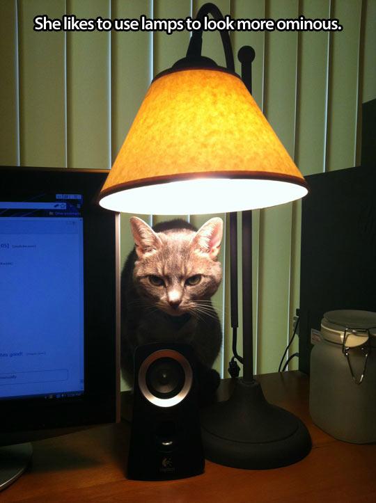 funny-cat-lamp-ominous