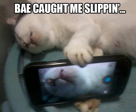 Bae caught me slippin'…