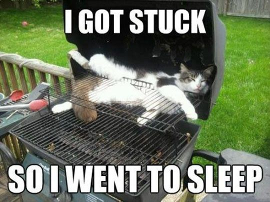 I got stuck…
