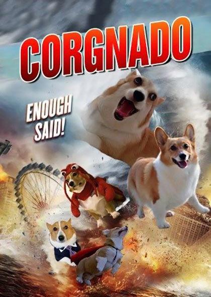 funny-corgi-dog-tornado-Sharknado