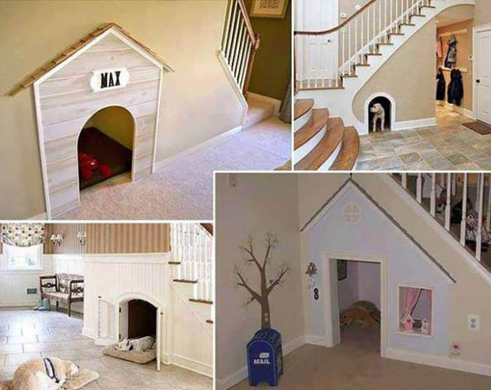 Someday I will build one on these for my dog…
