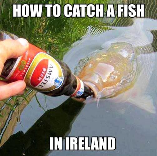 Fishing in Ireland…