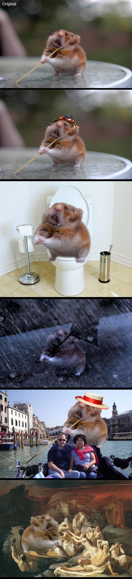 funny-hamster-Photoshop-spaghetti