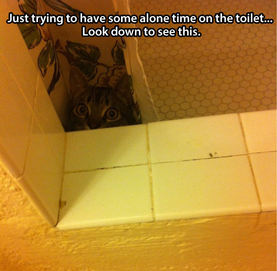 Trying to have some alone time…