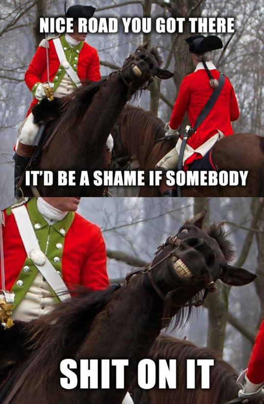 funny-horse-smile-soldier-battle