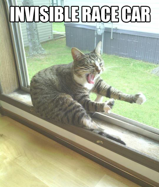 Invisible race car…