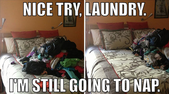 Funny Laundry Pictures Nice Try Laundry…