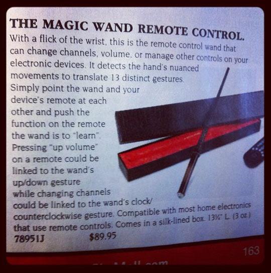 I'm never using a regular remote control again…