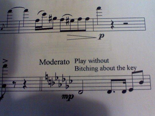 funny-music-sheet-Moderato