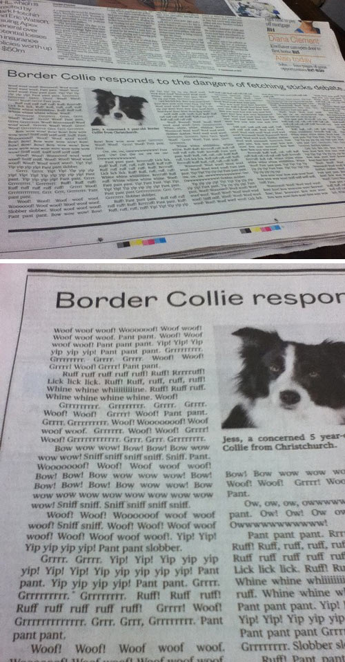 funny-newspaper-dog-article