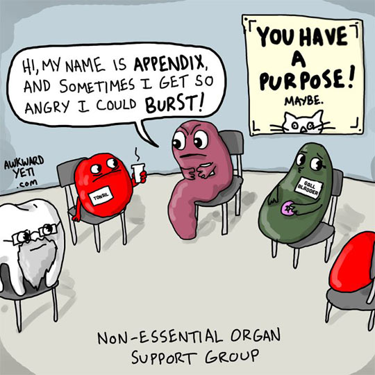 Organ support group…