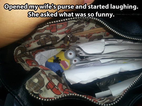 funny-scary-Minion-toy-purse