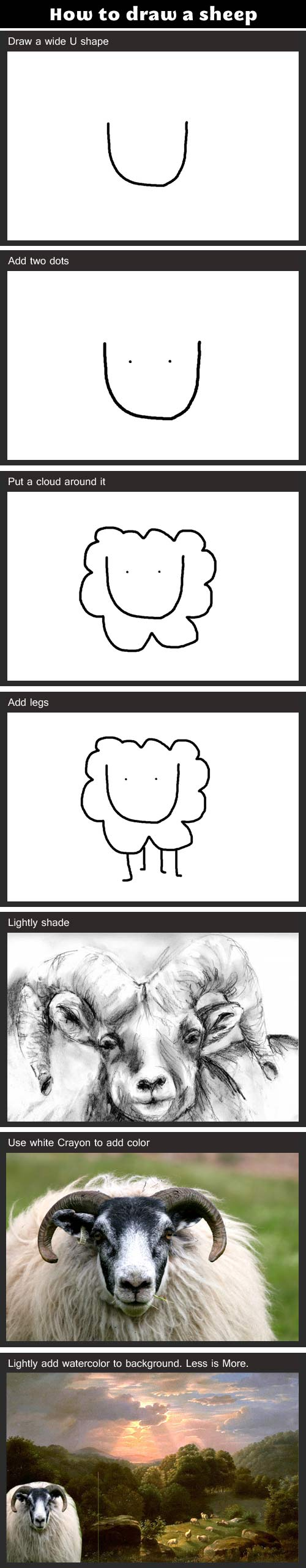 How to draw a sheep…