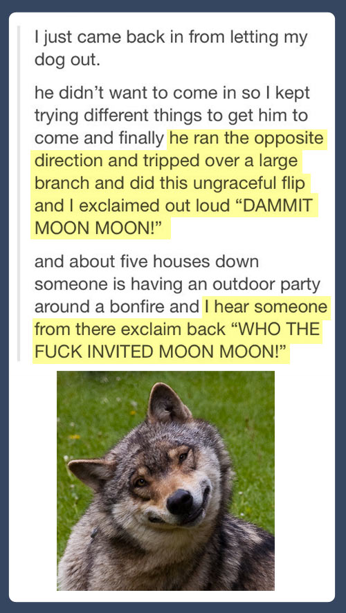Who invited Moon Moon?