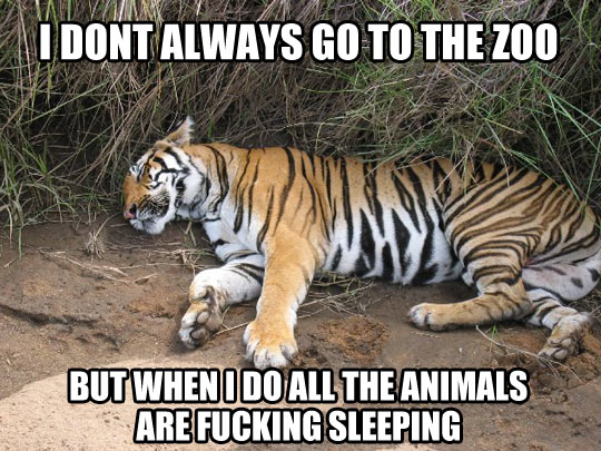 Every time I go to the zoo…