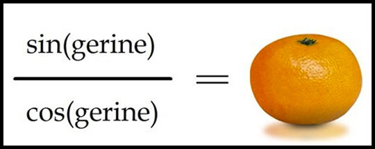 Math puns are the first sine of madness…