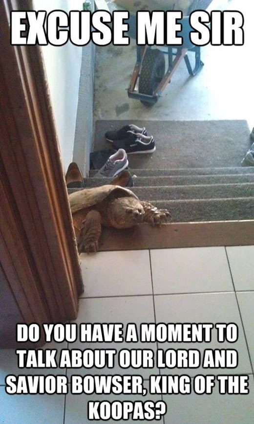Excuse me, do you have a moment…