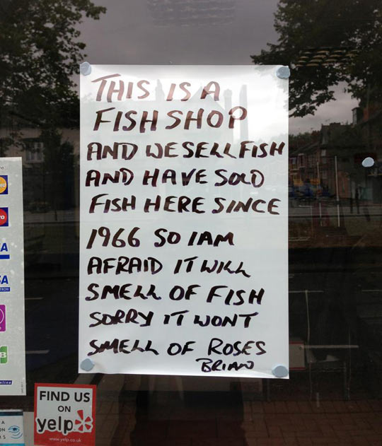 funny-window-fish-shop-smell