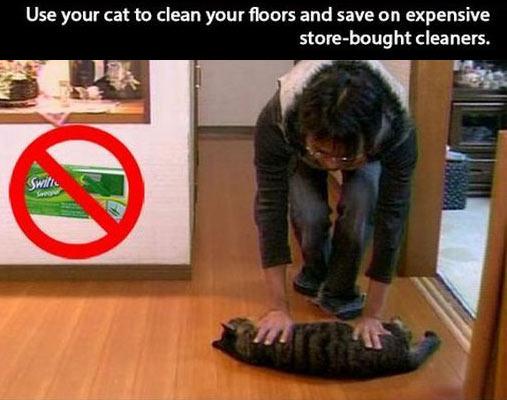 funny-woman-clean-floor-cat