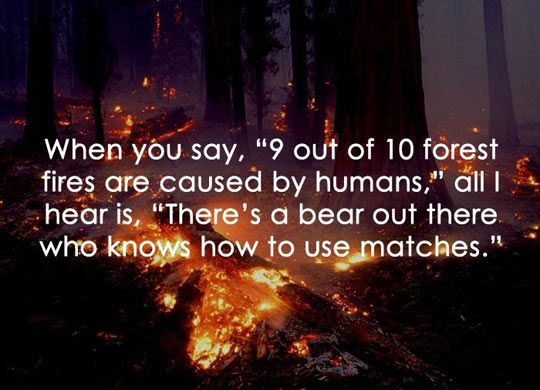 funny-wood-forest-fire