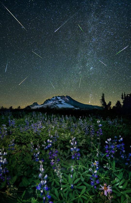 The Perseid meteor shower over Mt. Hood…