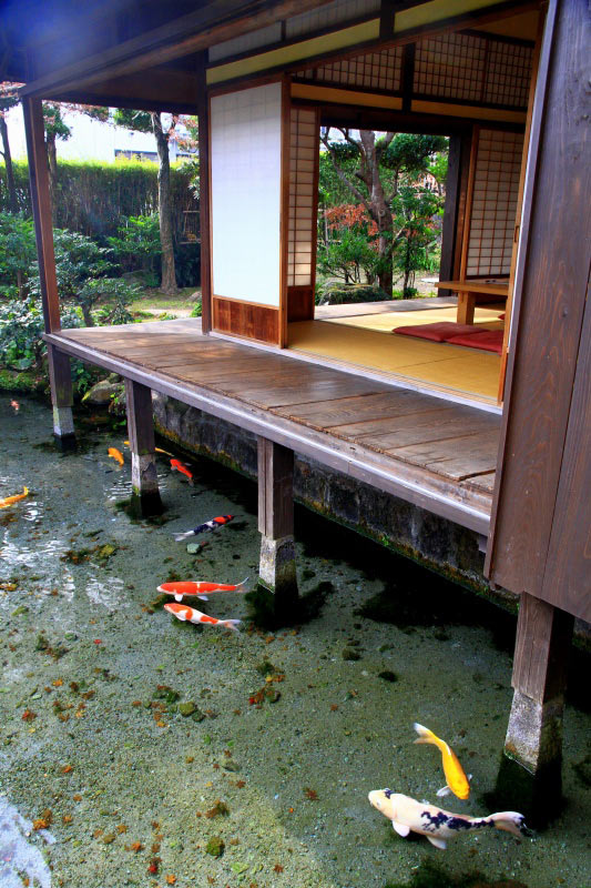 cool-water-clean-fish-house