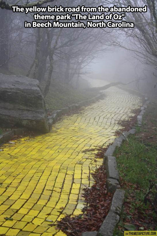 Creepy yellow brick road…