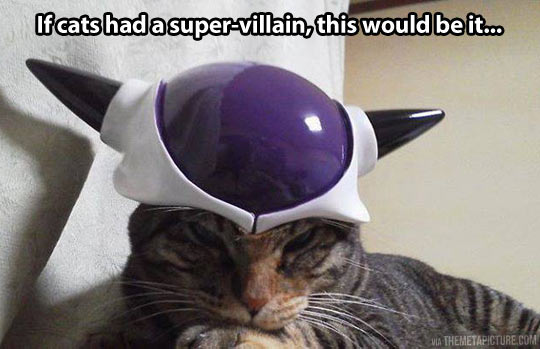 If cats had a super villain…