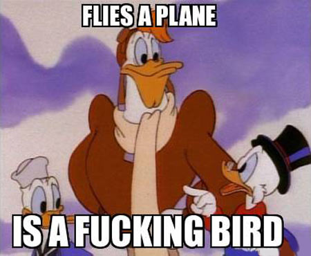 funny-Ducktales-bird-plane