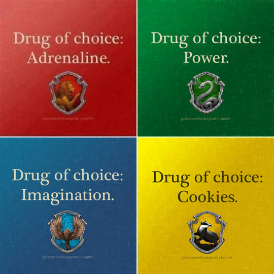 funny-Harry-Potter-houses-addiction