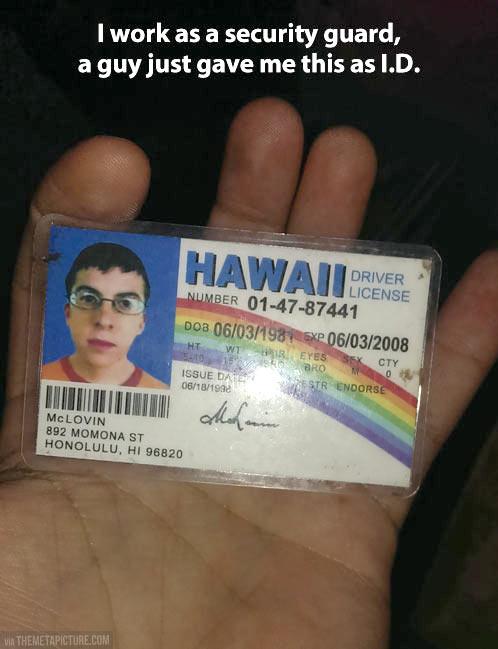 funny-Hawaii-license-rainbow