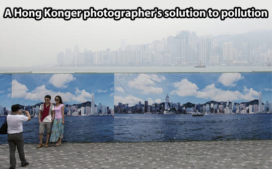 A solution to pollution…