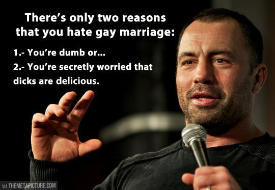 funny-Joe-Rogan-gay-marriage