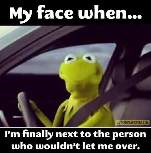 funny-Kermit-Frog-car-face