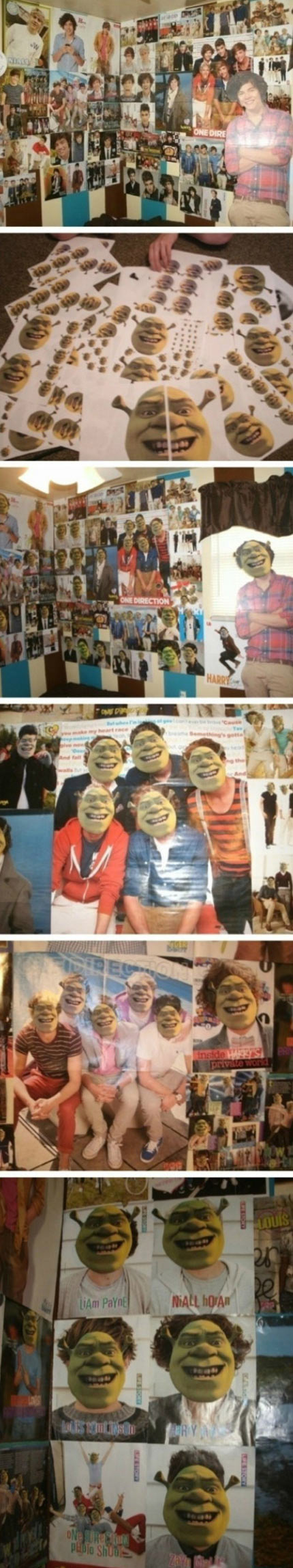 funny-One-direction-face-Shrek
