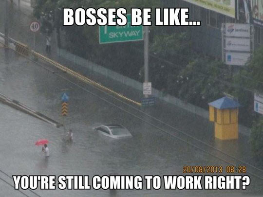Bosses be like…