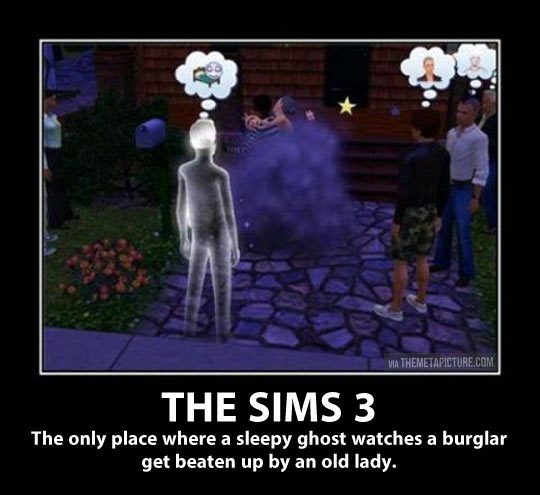 funny-Sims-3-ghost-watching-burglar