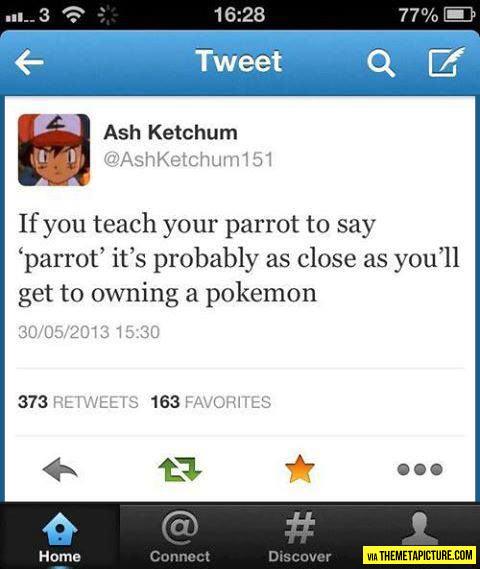 funny-Tweet-Ash-Ketchum