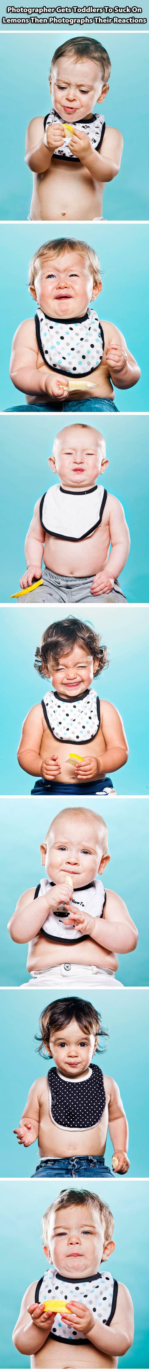 funny-babies-bite-lemon-citric