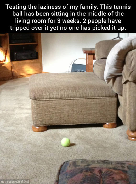 funny-ball-tennis-couch-test