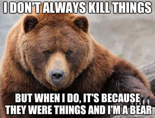 The most interesting bear in the world…