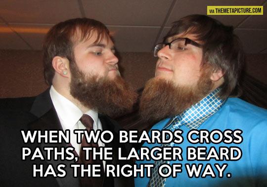 Do you even beard?