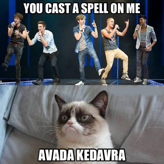 funny-boy-band-spell-Avada-Kedavra