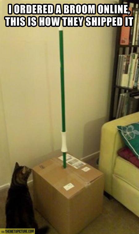So I ordered a broom online…